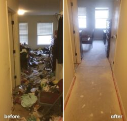 Hoarding Clean Out, Before & After